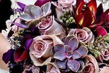 Bouquet! / by Rhonda Nichols