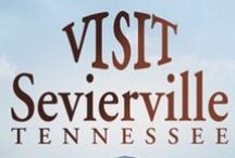Sevierville / Inside reviews of the best spots in Sevierville!