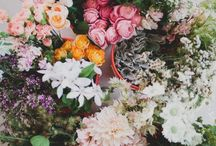Flowers / by Claire Jensen