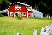 Old barns, Churches & barnwood / by Sherry Bardone