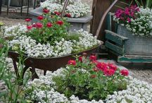 Gardening ideas / I may get around to it one day!