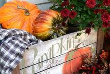 Seasons: Fall / All Things Fall - Decor, Recipes, and Fun Fall Activities / by Lynnae McCoy