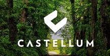 As Oy Castellum / Castellum rakentuu Kaarinan Rauhalinnaan – paikkaan, jossa moottoritie päättyy ja saaristo alkaa. Vehreän lehmuston keskelle rakennettava merenrantakohde on suloisesti sivussa hälinältä ja kuitenkin lähellä kaikkea.  Castellumia kiertävä metsikkö muodostaa suojan asuinalueen ympärille. Monipuoliset ulkoilumaastot alkavat omalta takapihaltasi, ja lähialueelta löytyy useampikin viihtyisä uimaranta. Astu luonnon rauhaan Kaarinaan. www.arjasmaa.fi