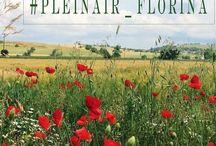 """Пленэр в Греции / Флорина - уютный городок  с мощеными аллеями и тихими улочками с красивыми особняками. О, да! Там есть что порисовать, недаром его называют """"город художников""""."""