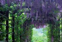 Garten- so Wundervoll