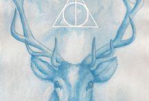 Harry Potter♥️