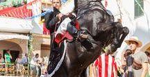 Menorca Horses / Menorca Horses