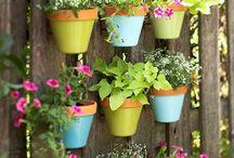 Garden and outdoor ideas / by Serena Smith