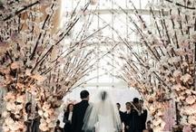 My Fairytale Wedding / by Melanie Potoka