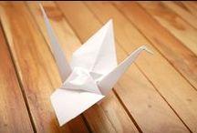 paper craft / by kristina lf