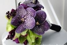 Wedding - Flowers / by Stacy Wharton