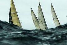 Sailing / by Staci Marengo