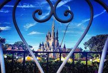 Disney World Vaca