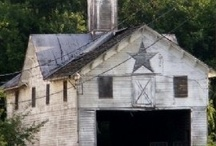 Old Country Barns / Weathered worn structures, smell of hay and mice. Useful time pieces, hard worn, often paid the price. Some still stand a monument, solid they did last, others dilapidated, remnants of the past.  By Babe in the Woods  / by Babe in the Woods