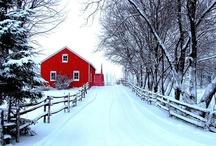 I love Winter!