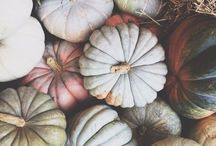 Fall / by Kimmy Stoll