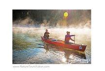 Yukon Photo Travel - Canoeing / Nature / wildlife / landscape photography on a guided canoe adventure.