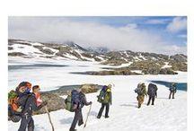 Yukon & Alaska - Backpacking / Nature / landscape / wildlife photography on guided backpacking adventures.