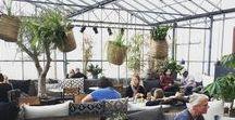 De provincies // Zuid-Holland / #zuidholland #provincie #provinciezuidholland #restaurant #eetgelegenheden #drinkgelegenheden #cafe #etenendrinken #lunchen #eropuit #Nederland #dagjeweg #citytrip #travel #reizen #uitje