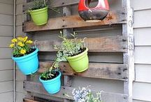 For the Home: Outdoor Projects / Outdoor projects, landscaping ideas, and to make your yard pretty.  / by Kasey Trenum