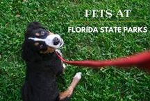 Pets of Florida State Parks / by Florida State Parks