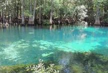 S.O.S. = #savingOURsprings / We are dedicated to saving and preserving our Florida Springs and natural wonders.