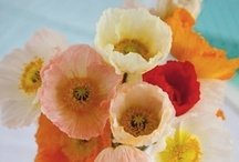 Spring has Sprung! / Color palette and inspiration for The Wedding March Mar 3