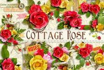 Cottage Rose Scrapbook Collection / A beautiful rose themed scrapbook collection from Raspberry Road Designs. / by Raspberry Road Designs