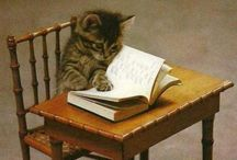 Cats - and Books / Cats and books... Just perfect!
