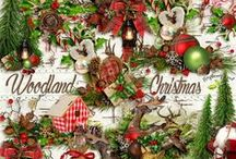 Woodland Christmas / by Raspberry Road Designs
