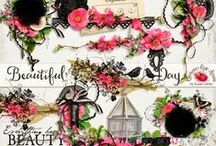 Beautiful Day Scrapbook Collection / by Raspberry Road Designs