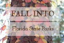 Fall In Florida State Parks / While sunny south and central Florida are warm throughout the year, we get a taste of the fall season at our northern parks! Gear up and get ready for campfires, changing leaves and cool breezes! Plan your Fall 2016 Camping Trip and find ways to incorporate the Sunshine State into your décor with a little help from this Pinterest board.
