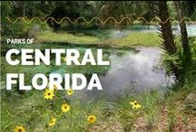 Parks of Central Florida / Ocala | Orlando | Kissimmee | Find Central Florida State Parks with our Regional Maps: https://www.floridastateparks.org/parks-regional-map/central