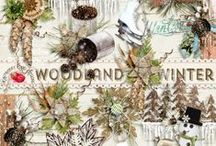 Woodland Winter Scrapbook Kit / A winter themed scrapbook collection filled with something for everyone. / by Raspberry Road Designs