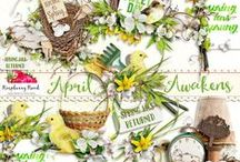 April Awakens Collection / A Spring themed scrapbook collection from Raspberry Road Designs. / by Raspberry Road Designs