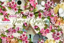 Dawn Of Spring Collection