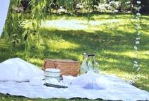 gardens & picnics / by Grace Brooks