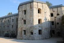 History & Culture / Questi luoghi mostrano i segni e le testimonianze della storia, scritta nelle pietre che delimitano e disegnano i pascoli...