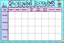 Routines/Comportement