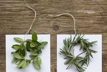 holiday decor / by April Bly