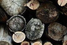Logs & Woodpiles