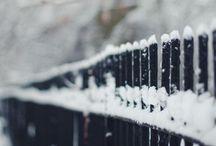 brrrr winter / by Hannah Lee
