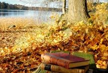 Autumn - GET INSPIRED! / What inspires you in Autumn? Cosy fireplace and warm blankets? Autumn leaves on a mantelpiece? Or maybe steaming cup of tea or hot chocolate? We love it all!