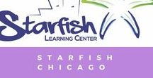 Starfish Chicago / All about Starfish!