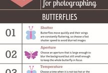 Photography Tips and Tutorials / Lists and cheat sheets for nature and landscape photography. Create your own stunning images!
