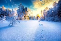 """Winter / """"The meadows and far-sheeted streams lie still without a sound; Like some soft minister of dreams the snowfall hoods me around; In wood and water, earth and air, a silence is everywhere."""" Snow, Loreena McKennitt / by Victoria"""