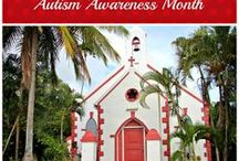 Autism Awareness / Recommended books and blogs, information about autism, school inclusion methods, therapy ideas and autism awareness clothing!