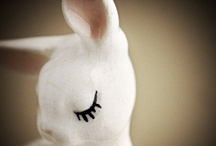 Bunny Rabbits / Perhaps the cutest critters to ever hop the earth. / by Priscilla Fairchild