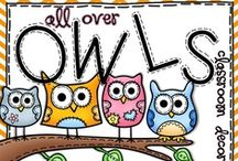 Classroom Owls Theme