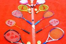 Racquet Sports / From tennis to racquet ball, we've got it all!  / by Modell's Sporting Goods